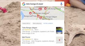 cara mudah langsung terindex google